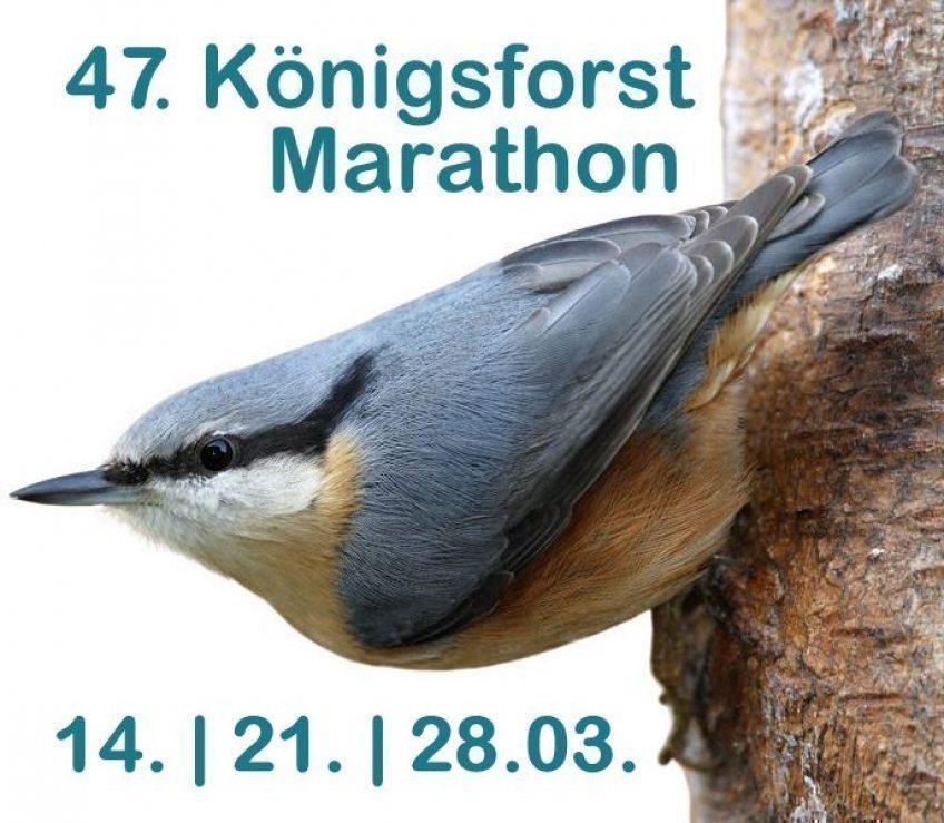 47. Königsforstmarathon 14., 21. und 28. März 2021