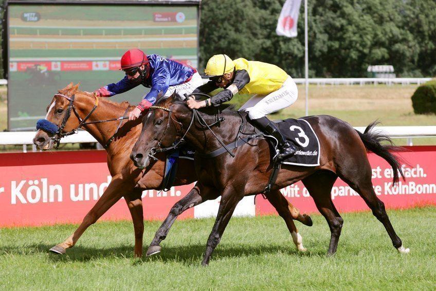 Degas hat am 29.06.2020 auf der Kölner Pferderennbahn gewonnen