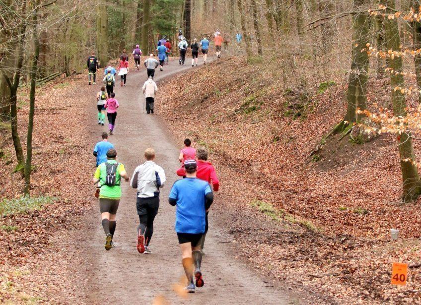 ► Montag 14.09. ab 6.00 Uhr in der Frühe:  Reststartplätze für Königsforst-Marathon am Sonntag, 18.Oktober in Bensberg