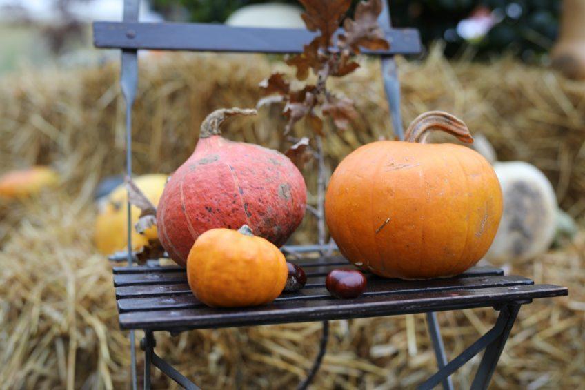 3. und 4. Oktober 2020 Herbstmarkt auf Schloss Eulenbroich Kunsthandwerkermarkt vor traumhafter Schlosskulisse