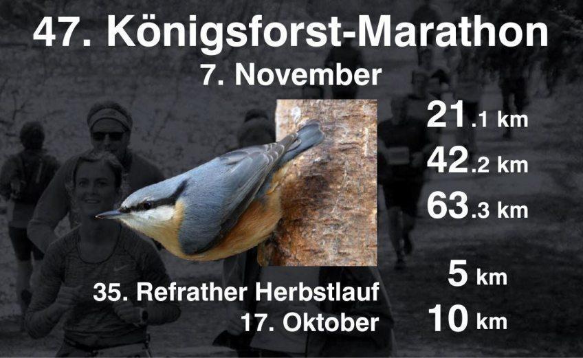 Start für eine virtuelle Auflage des Köfo-Marathon 01.03.2021